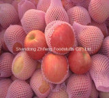 Fresh Red Apple From China
