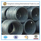 Prime Steel Wire Rod in China