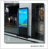 China Advertising Player Hot 65inch LCD Advertising TV