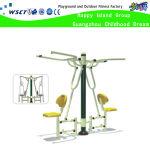 Double Sit Pull Training Machine Amusement Fitness Equipment (HD-17501)