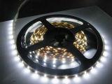 LED Lamp 12V/24V LED Strip LED Light