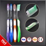 OEM Private Label Printed Transparent PETG Handle Clear Adult Toothbrush