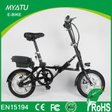 Aluminium Alloy Frame 14 Inch Folding Smart Ebike with 250W Motor