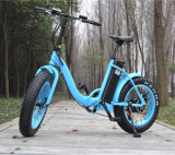 20inch Folding Fat Tire 500W E Bike Rseb-509