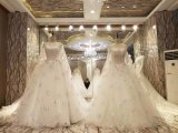 New Design Stunning Bride Marriage Wedding Dress