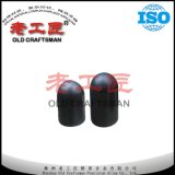 OEM Supply Spade Tungsten Cemented Carbide Rock Drill Bit