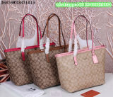 Newest Manufacturer Women Fashion Bags Package