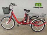 Hot Sale Three Wheel Cargo Basket Electric Trike