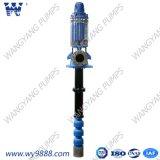 Long Shaft Vertical Deep Well Centrifugal Multistage Pump
