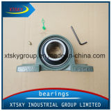 NSK Auto Parts Pillow Block Bearing (UCP208)