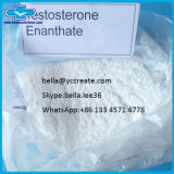 Raw Chemical Anabolic Steroid Hormone Powder Testosterone Enanthate for Bodybuilding