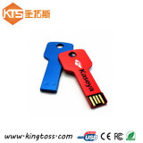 Key USB Flash Drive Disk CE Approved Promotion Anti-Copy Custom Memory Stick Pen Drive