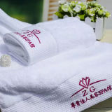 Eco-Friendly Compressed Terry Hotel Facetowels Wash Cloth