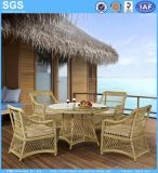 Garden Set Outdoor Furniture Round Wicker Circle Rattan Dining Table Set