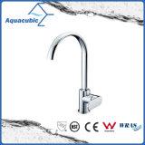 Single Handle Kitchen Sink Faucet (AF9160-5)