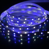 RGBW Color SMD5050 LED Strip Lights