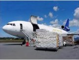 Consolidate Air Shipping/Air Freight of Catalogues From Guangzhou to Europe