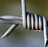 The Good Quality PVC Coated/ Galvanized Barbed Wire