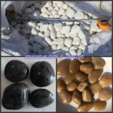 Pebble/River Stone for Garden Landscape (YY-Black/Yellow/White Color)