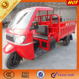 Cargo Coverd Cars Trucks Rickshaw for Sale