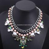 Shourouk Style Fashion Necklace/Fashion Jewelry (XJW13172)