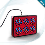 Cidly Apollo LED Grow Light for Hydro Growing Greenhouse (APO 6)