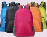 SGS/BSCI/RoHS/ISO9001 Premium Quality Outdoor Backpack Bag/Travel Backpack Bag
