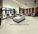 Ceramic Porcelain Floor Wall Tiles White Pulati Building Materials (FP6001)