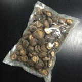 Dried Mushroom (Coin Size)