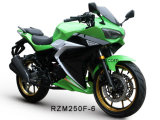 Rzm250f-6 Racing Motorcycle 150cc/200cc/250cc