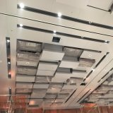 New Style Customized Meal Ceiling with Factory Price for Hotel Decoration
