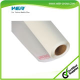 Best Supplier Eco Solvent Backlit Film