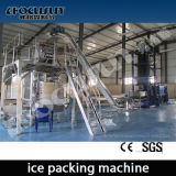 20 Tons/Day Tube Ice Machine with Ice Packer