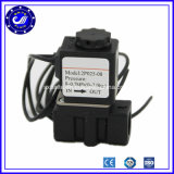 China 2p Series Low Price 2 Inch Water Micro Solenoid Valve