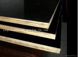 15mm Film Faced Plywood- Black Color