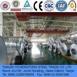 6061 Aluminum Coil for Beer Bottle