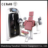 CE Approved Gym Bodybuilding Machine Biceps Curl for Muscle Exercise