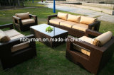 Rattan Sofa Set (FSS-08-02)