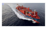 Consolidate Shipping Servicefrom China to Philadelphia Shipping