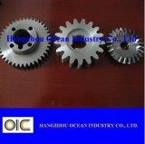 OEM Spur Gear Bevel Gear
