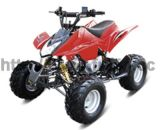 110cc 4-Stroke off-Road Fully Automatic EEC Utility ATV (FXATV-002A-110cc SC)