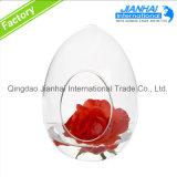 Hot Selling Beautiful Glass Vase Hanging Ball