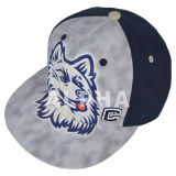 Professional Print Logo Cotton Baseball Hat with OEM Customized Logo