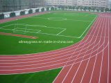 Excellent High Shock Absorption Running Track with Iaaf Standards