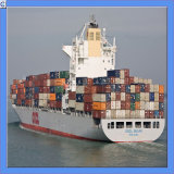 Shipping Forwarding From Shanghai/Qingdao to Middle East Area (IC0016)