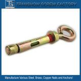 10X100mm Eye Bolt Flange Nut Sleeve Anchor China Produce