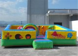 Inflatable Amusement Park, Inflatable Bouncer B1061