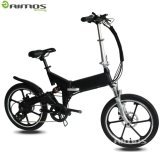 Hot Sale Cheap Bike Folding Mag Wheel Electric Bicycle