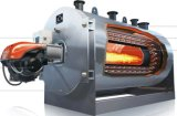 Wns Horizontal Gas Oil Fired Hot Thermic Oil Boiler