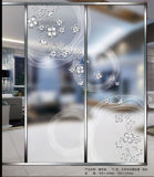Acid Etched/Printed/Patterned/Art/Mirror Glass for Decoration Glass